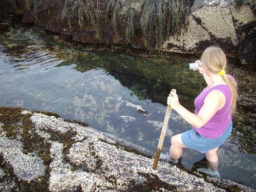 Laura_photographing_starfish